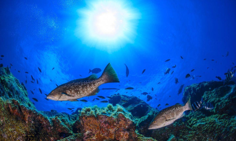 El Hierro, per un turismo sostenibile alle Canarie
