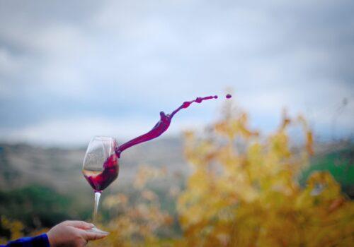 Il vino a casa tua, oggi è anche a chilometro zero