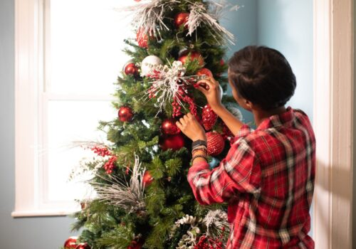 L'albero di Natale non è mai stato così sostenibile