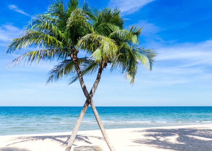 Vacanze caraibiche tra lusso e sicurezza