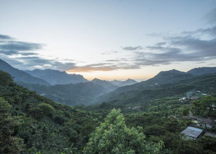 Per amore dell'ambiente regalati una foresta in Guatemala