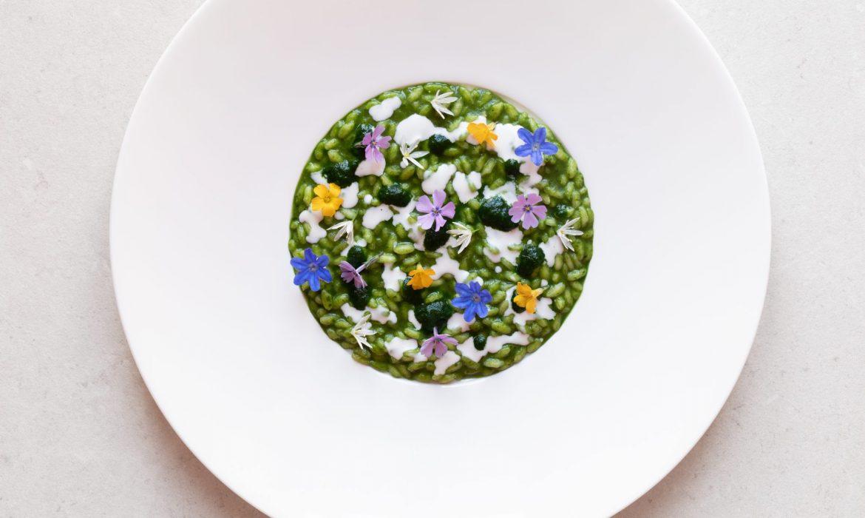 Un viaggio culinario nelle Langhe piemontesi