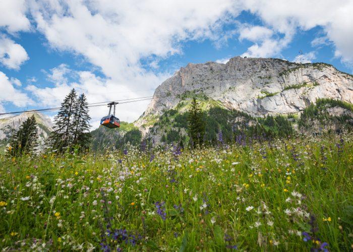 Quattro panorami per scoprire le Dolomiti dall'alto